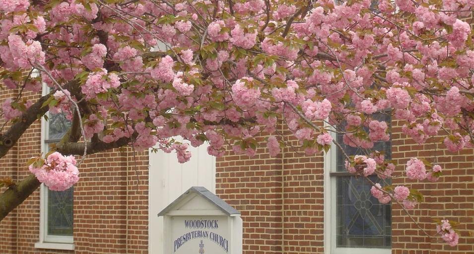 Woodstock Presbyterian Church