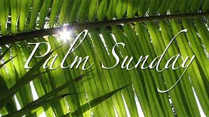 Palm Sunday Link to Video